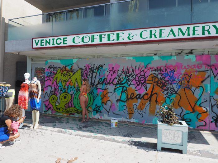 Лос Анжелес (Los Angeles). Venice Beach. Венера (Venus)