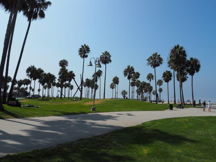 Лос Анжелес (Los Angeles). Venice Beach. Пальмы.