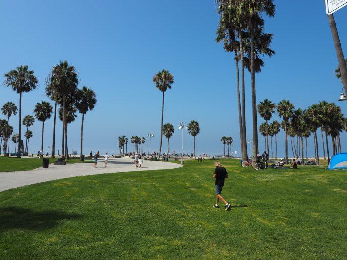 Лос Анжелес (Los Angeles). Venice Beach. Зеленая зона.