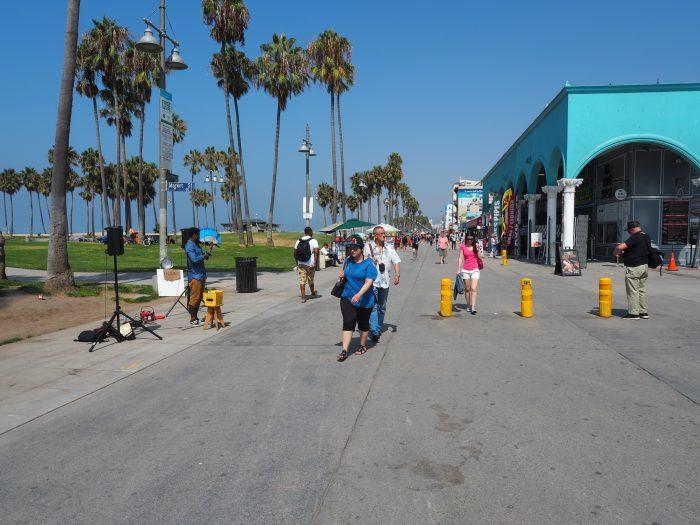 Лос Анжелес (Los Angeles). Venice Beach. Скрипач