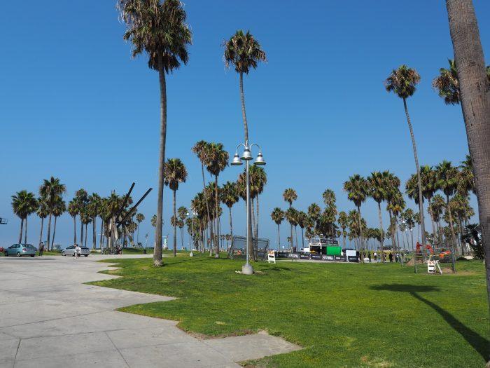 Лос Анжелес (Los Angeles). Venice Beach. Зелень. Пальмы.