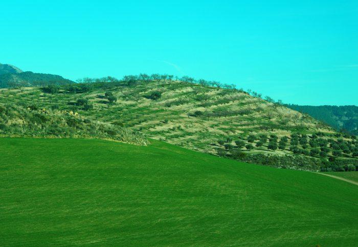 Landscape among Malaga and Ronda